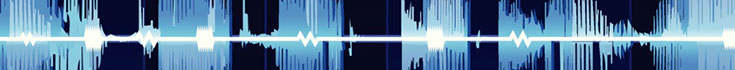 voice_735x70.jpg