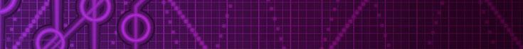 digital_service_binary_purple_735x70.jpg
