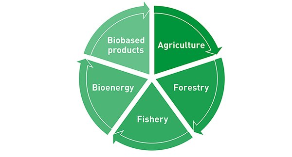 Figure 1: Overview of the areas that make up the bioeconomy